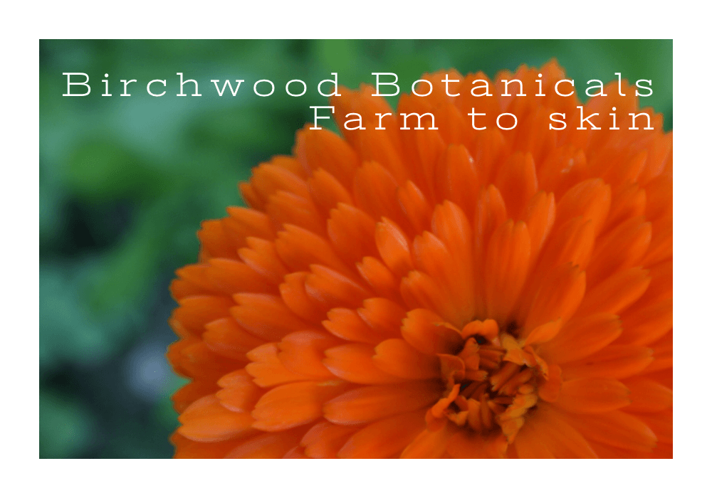 Birchwood Botanicals